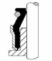 CORTECO  Rõngastihend, klapisäär 20026467