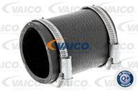 VAICO  Laadimisõhu voolik Q+,  original equipment manufacturer quality V25-0995